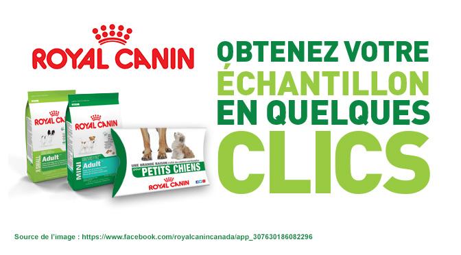 echantillons-gratuit-royal-canin